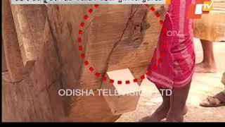 Rath Yatra 2018 Defects Found In Devadalan, Taladhwaja Chariots