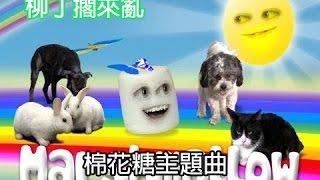 柳丁擱來亂: 棉花糖主題曲 Marshmallow Theme Song【中文字幕】