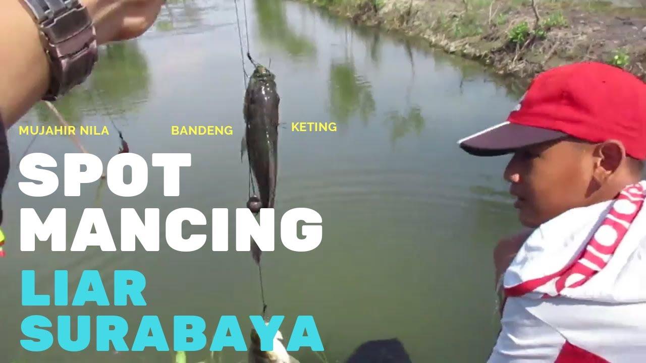Spot Mancing Di Surabaya