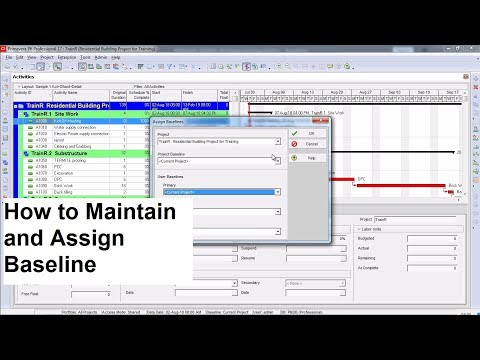 PRIMAVERA P6 TRAINING - 08 Maintain and Assign Baseline