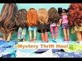 Who Did We Get? Thrift Doll Haul //Heart to Heart Journey Girl OG