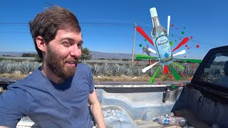 I Hitchhiked Across Mexico For Tequila