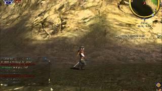 LOTRO dance hobbit.