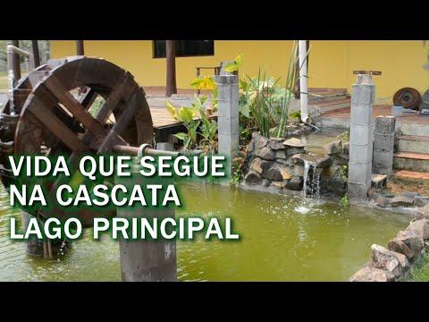 VIDA QUE SEGUE NA CASCATA E NO LAGO PRINCIPAL Canal Saalada