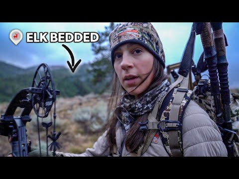 Stalking A BEDDED BULL! ( Idaho OTC ELK HUNT )