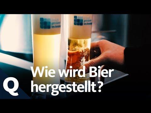 So Wird Bier Gebraut | Quarks