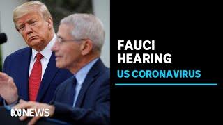 Experts testify on Trump administration's coronavirus response | ABC News