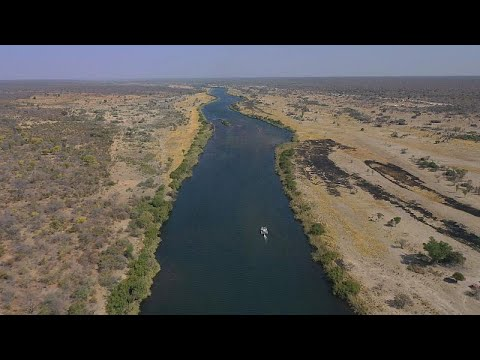 مجاهل أدغال أنغولا بين ضفاف أنهار دلتا أوكافانغو  - نشر قبل 2 ساعة