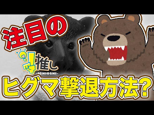 『注目のヒグマ撃退方法』【#1推し-ICHIOSHI-】 佐野愛