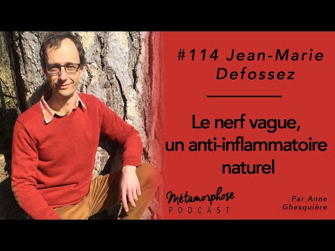 #114 Jean-Marie Defossez : Le nerf vague, un anti-inflammatoire naturel
