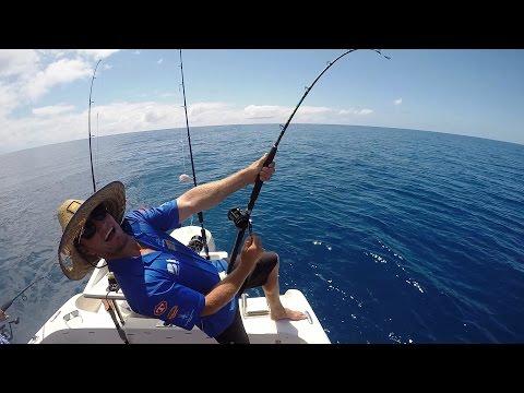 Reef Fishing Trip From Port Douglas