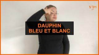 BIOLOGIE MARIN - Dauphin bleu et blanc