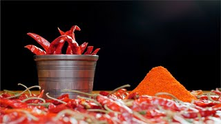 A pan shot of scattered dried red chilies, mortar and pestle and heap of powdered chilies