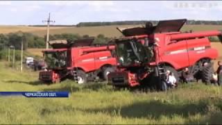 Рейдерский захват: на Черкащине агрофирма собирала фермерский урожай