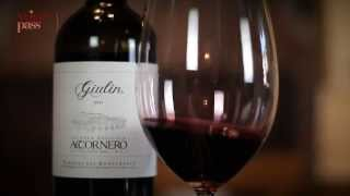 Wine Tasting - Accornero - Barbera Giulin