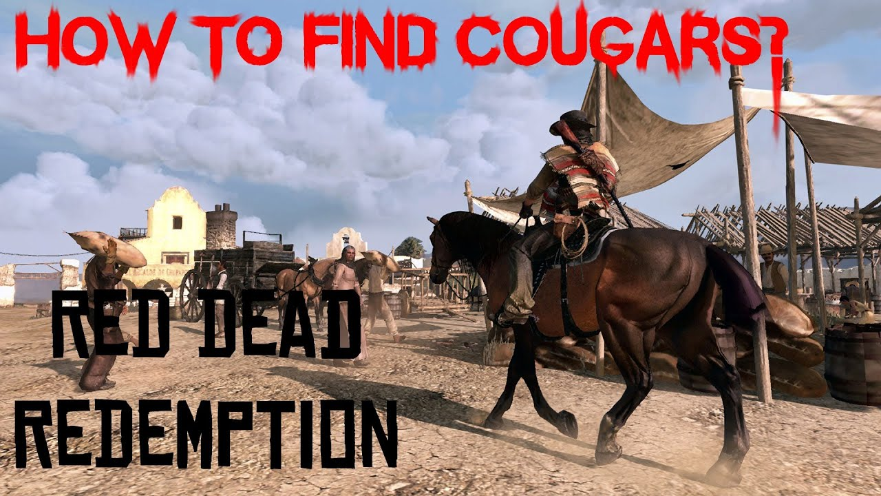 How to find a cougar
