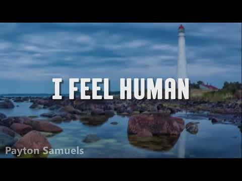Vicetone - I Feel Human (feat. BullySongs) Lyrics