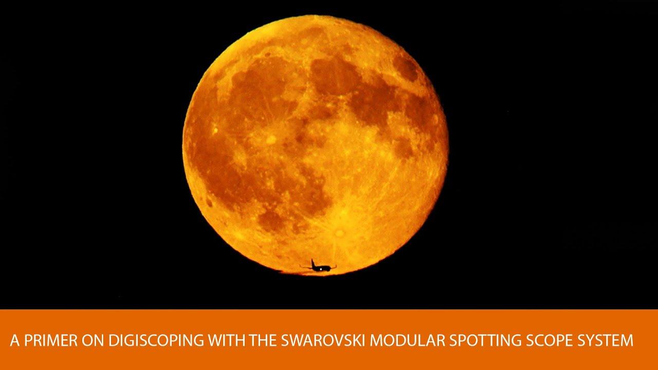 A Primer On Digiscoping With The Swarovski Modular Spotting Scope