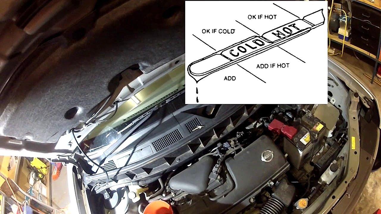 medium resolution of nissan cube fuel filter location wiring diagramnissan cube fuel filter location