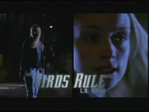Birds of Prey Tv Show (2002)- Counterpunch