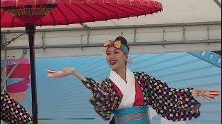 舞人 台湾フェスティバル 上野公園 thumbnail