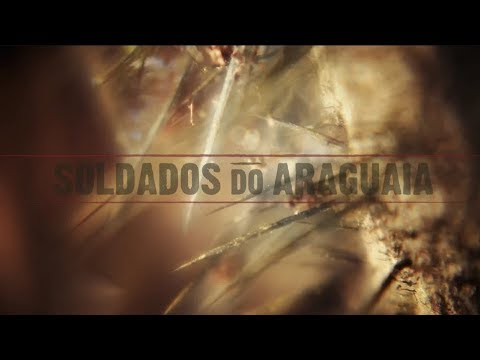 "Trailer ""Soldados do Araguaia"""