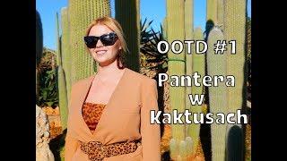 OOTD #1 Pantera w Kaktusach :)
