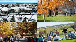 The Best Safety Schools College Fallback Options
