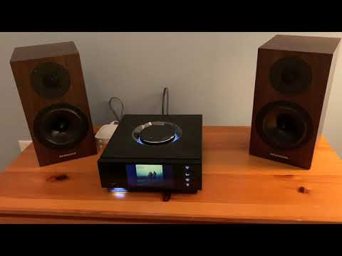 System audio mantra 70 with Hegel H300 | FunnyCat TV