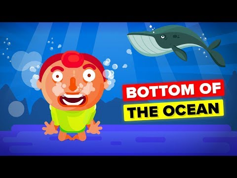 What Happens To Your Body at the Bottom Of The Ocean