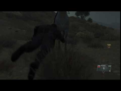 Snake rugby tackles a horse. Honestly.