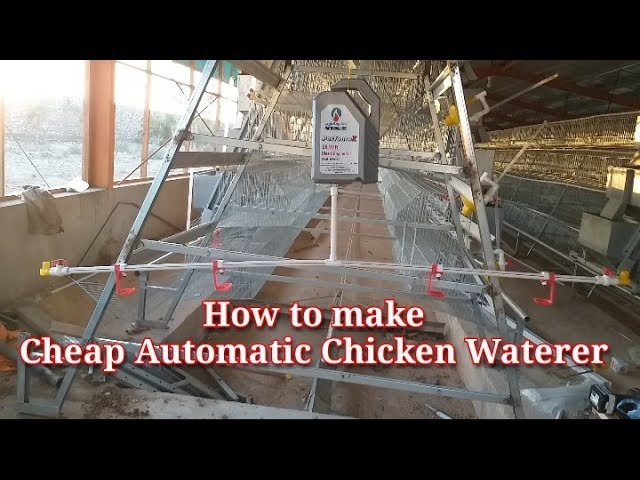 How to make a Cheap Automatic Chicken waterer