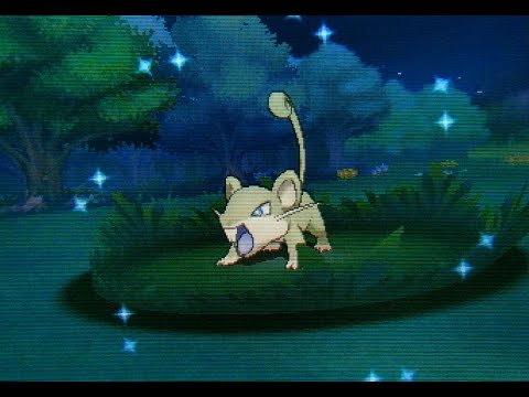 DEXNAV: Shiny Rattata After Just 68 Encounters On Route 117! (Pokemon Alpha Sapphire)