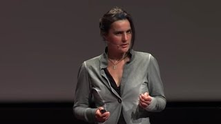 How small birds enrich our view on global warming | Janne Ouwehand | TEDxUniversityofGroningen