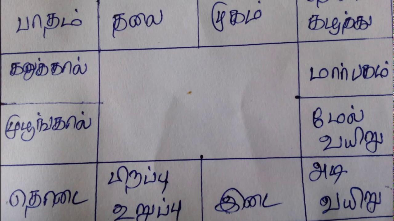 Rasi Chart Basics Rasi Kattam In Tamil