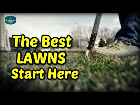 Want To Fix Your Lawn? Start Here | Soil Testing For Lawns