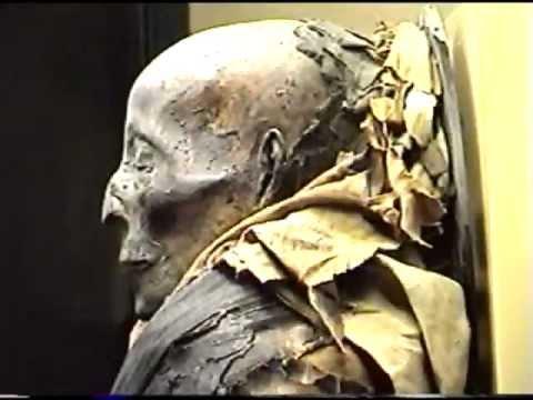 Egyptian Mummies Field Museum Chicago IL