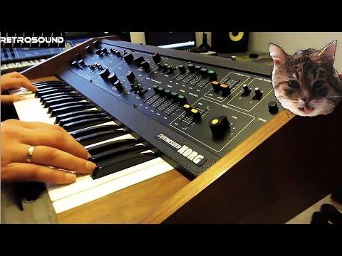 "MAXI-KORG 800DV Duophonic Analog Synthesizer (1975) ""Synth Cat"""