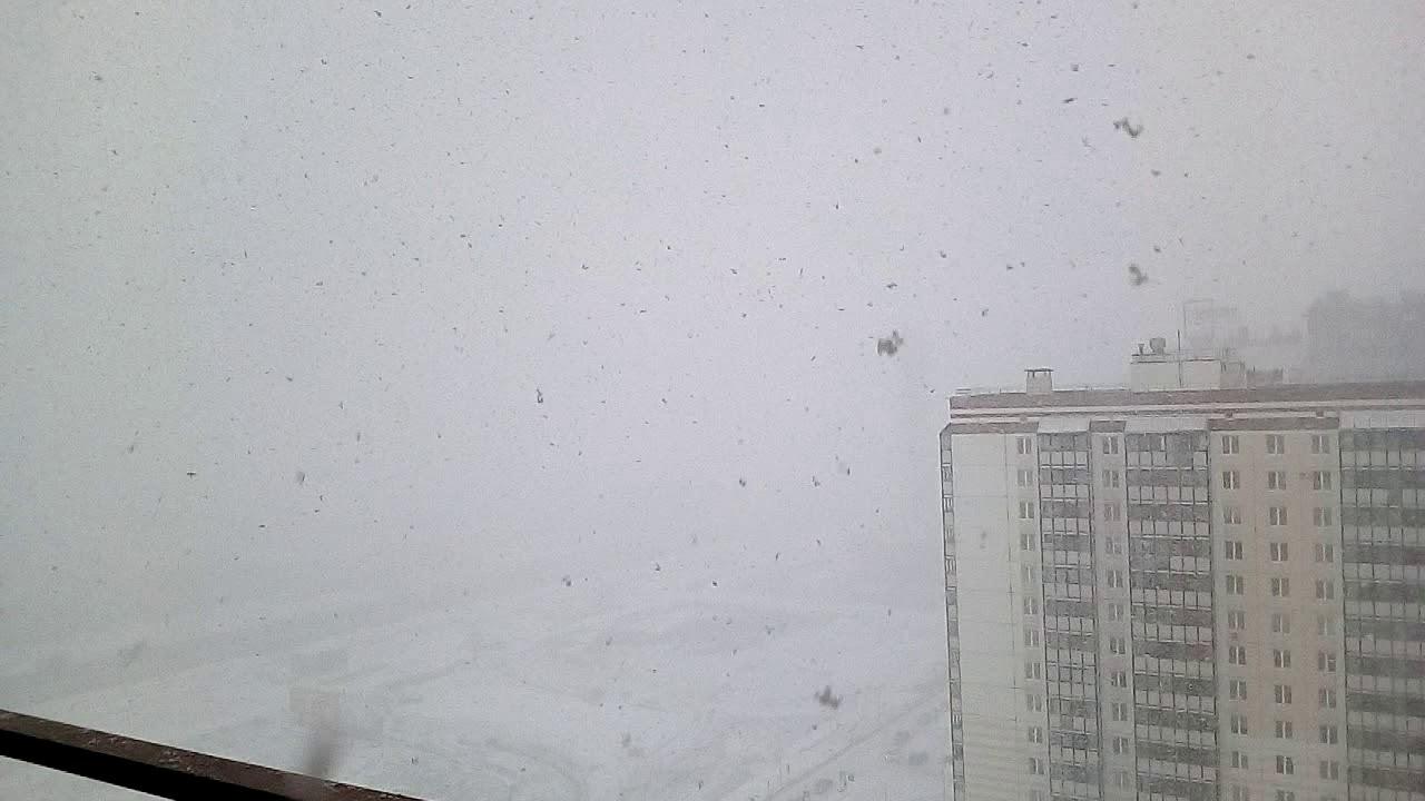 Мощный снегопад в Петербурге сегодня