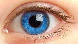 Почему желтеют белки глаз?