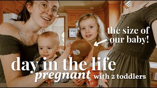 FINALLY Sharing What's Been Going On // Day in the Life PREGNANT with 2 Toddlers