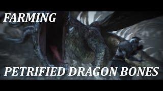 Dark Souls 2 - Petrified Dragon Bone Farming