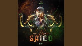 Saico (Original mix)