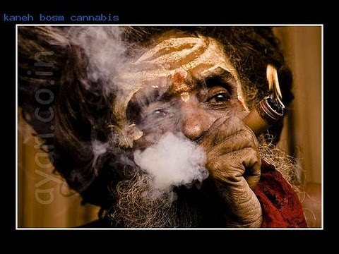 Sacred Smoking of Cannabis & The Tree of Life