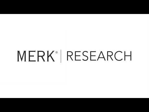 2018 01 17 Merk Research: The U.S. Equity Market