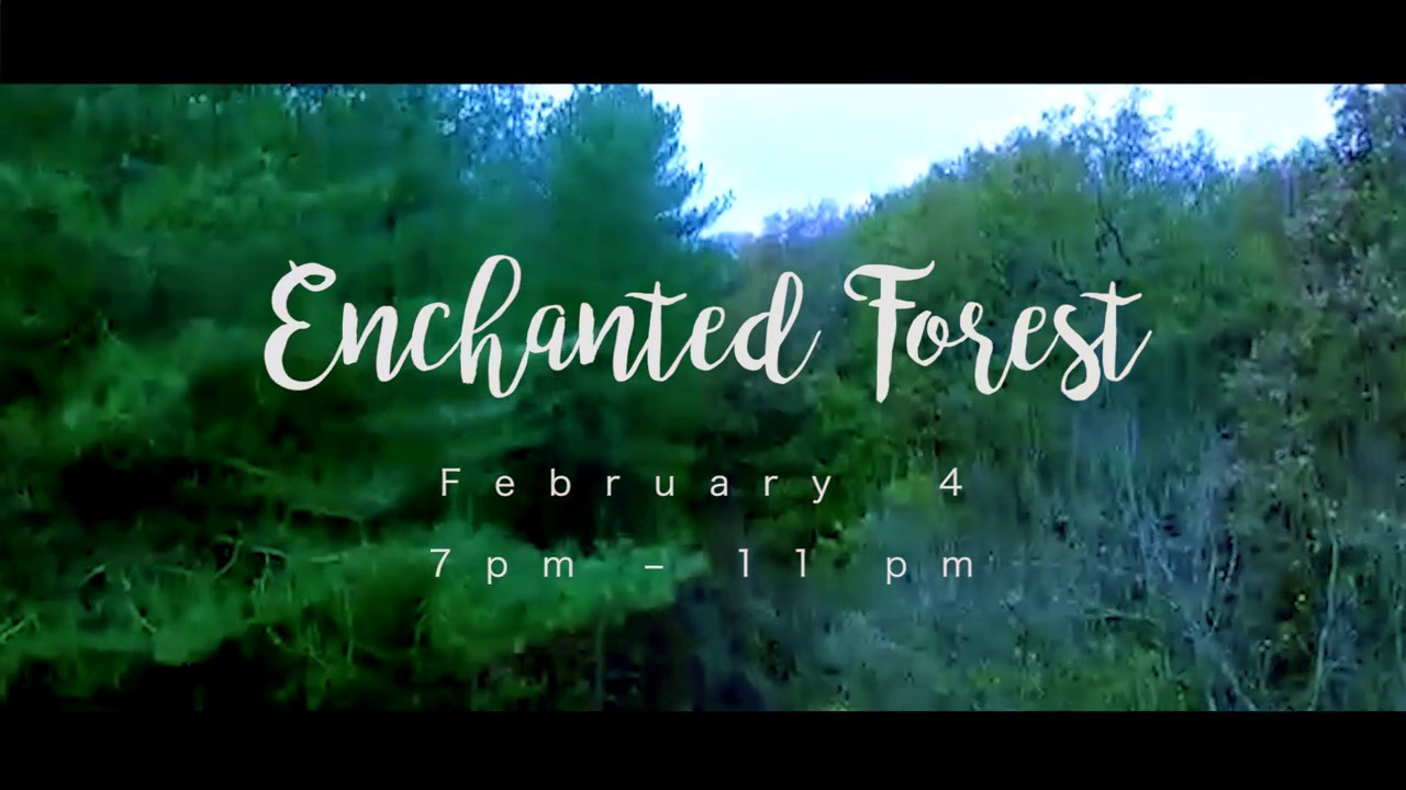 Enchanted forest coupons