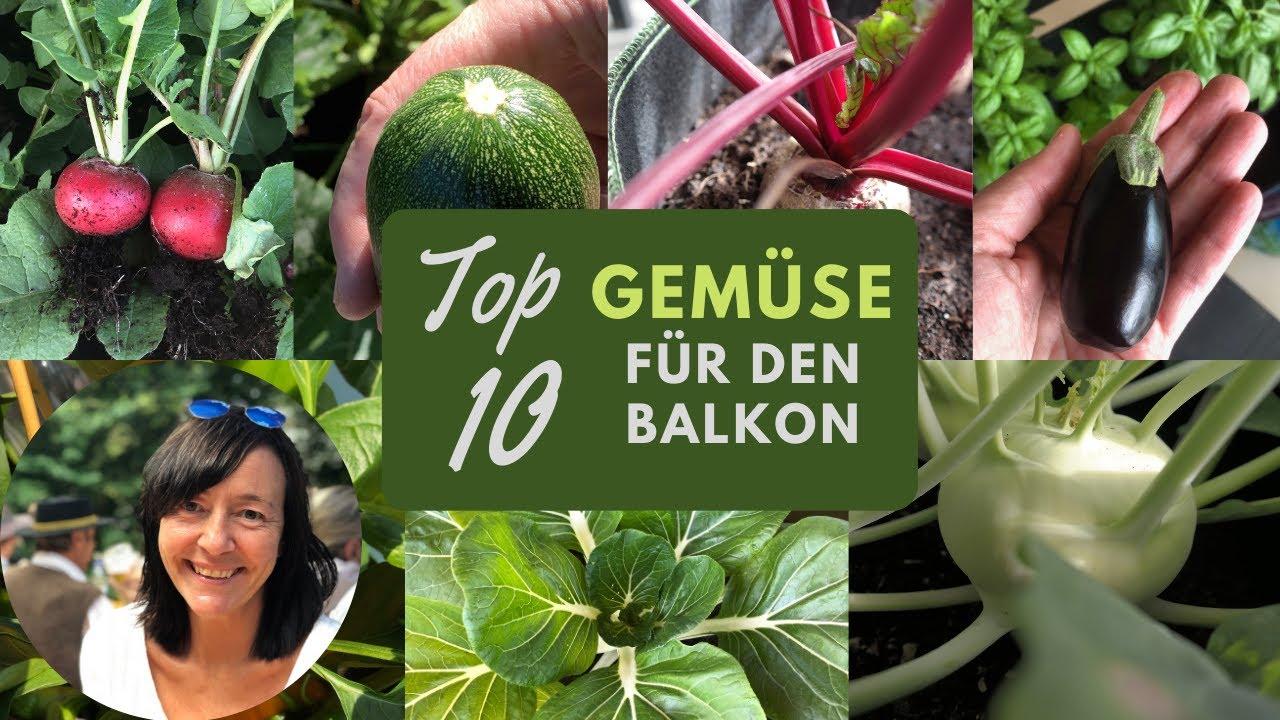 Gemüse auf dem Balkon anbauen   Top 8 Balkongemüse   Balkon Oase