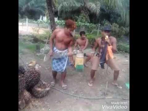 Band lombok terheboh