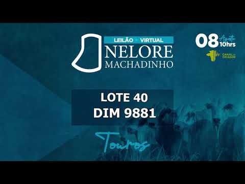 LOTE 40 DIM 9881