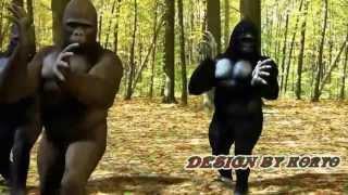 La Bize Her Yer Angara - Goril Versiyonu Bize Heryer Ankara